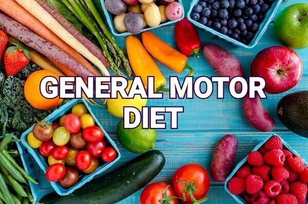 General Motor Diet thành công