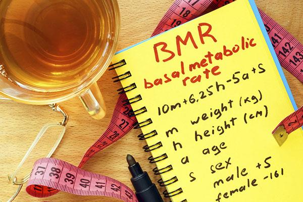 chỉ số BMR tính thế nào