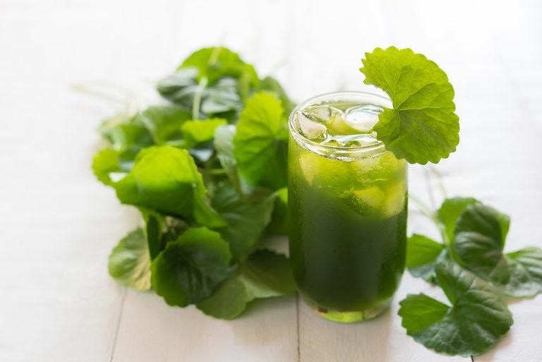 uống rau má giảm cân, cách làm nước uống rau má giảm cân, rau má giảm cân